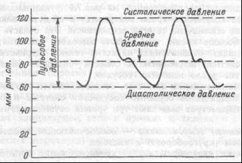 Систолическое, диастолическое, среднее и пульсовое давления