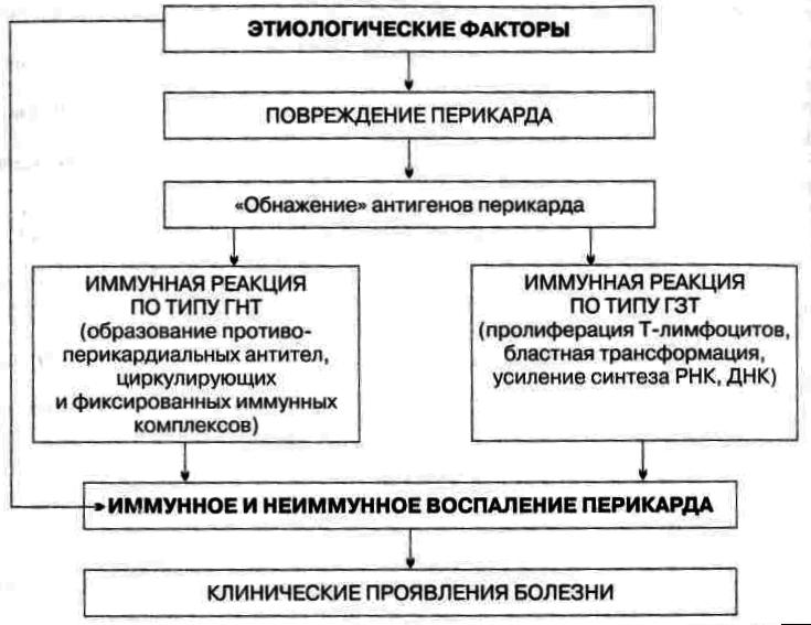 Патогенез Перикардита (Схема)