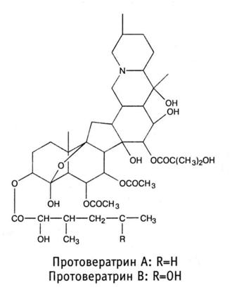 формула протовератрина А и В